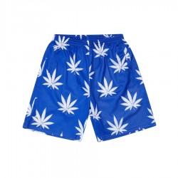 C&S Big Budz Mesh Shorts Royal