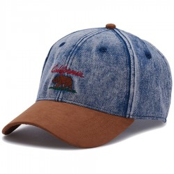 Cayler&sons - WL Cali Vibe Curved Cap